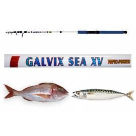 Canna Galvix Sea Bolentino 100g