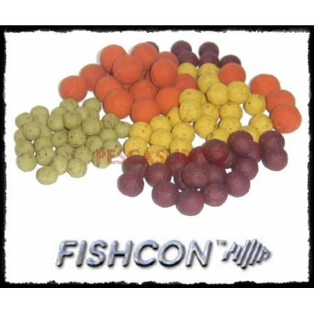 BOILIES ALL SEASON FISHCON
