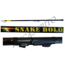 Canna Snake Bolognese