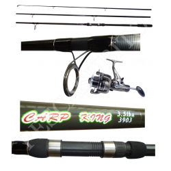 Kit Canna Carpfishing 3 sezioni + Mulinello / Globe Fishing Carp King Niged